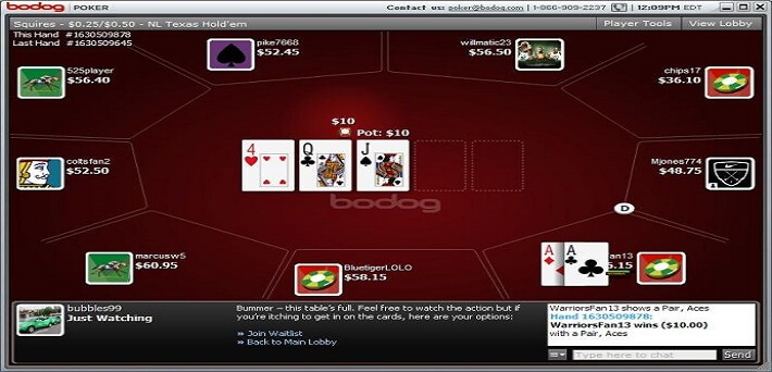 New Rakeback Deal: Bodog India just launched on PaiWangLuo network!